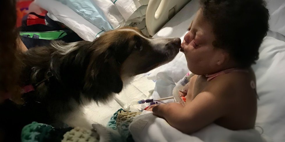 #MollysKids: Hickory's Miracle Child Passes Away. Gabriel Revis Inspired Us All.