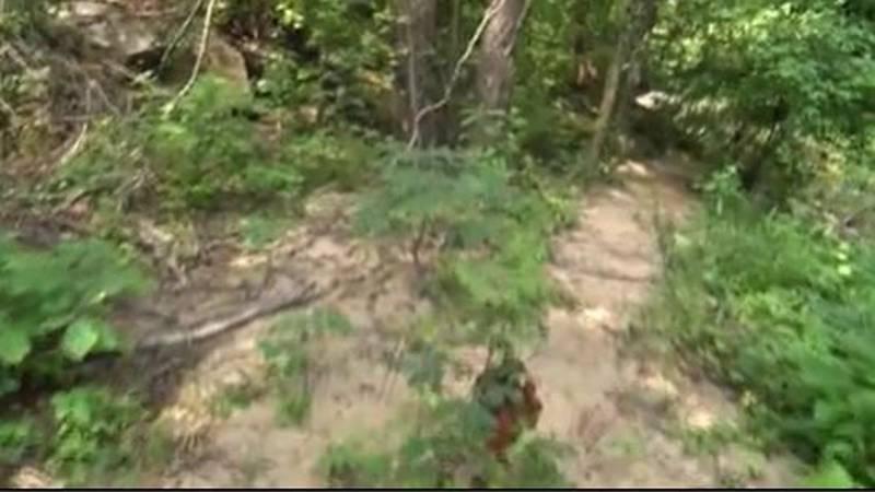 NC Forest Service warns of fire danger