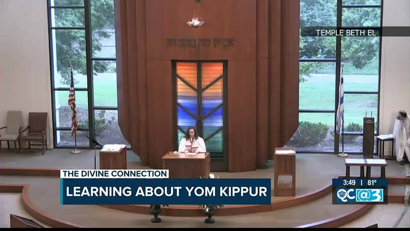 The Divine Connection: Learning about Yom Kippur