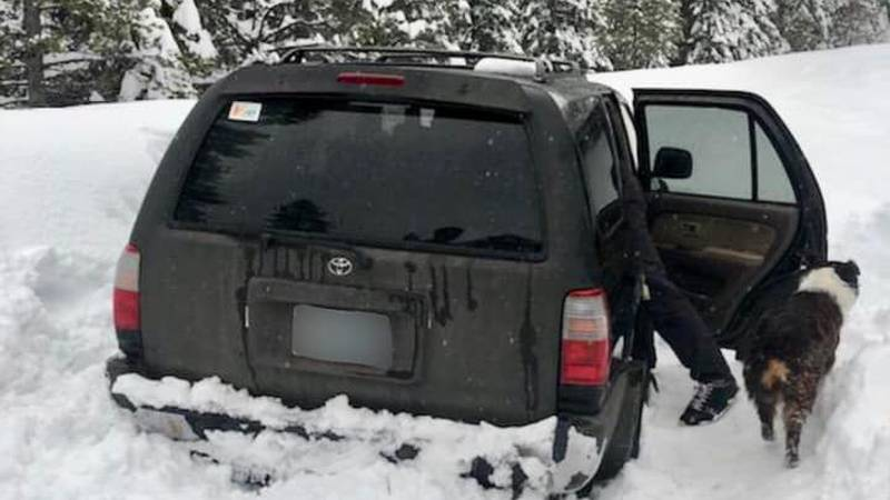 An Oregon man survived off of Taco Bell hot sauce packets while stuck in his car in the snow...