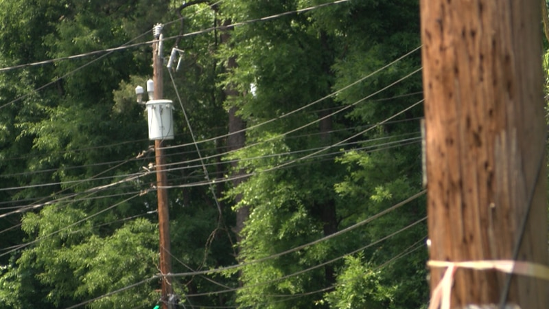 Crews will remove some fo the trees intertwined with power lines.