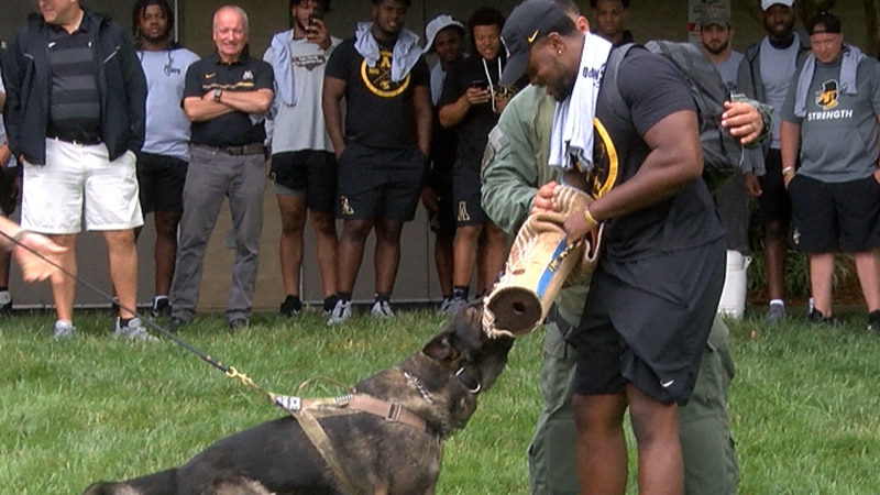 The players trained with K9s and experienced real-life scenarios in a firearms simulator.