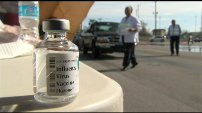 (FILE) Flu shot drive through event