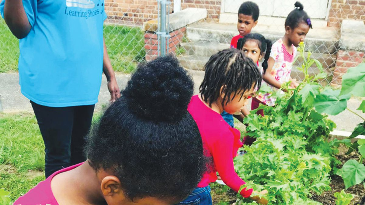 Photo courtesy of Happy Roots    Children at the Price Heaad Start program get close to the...