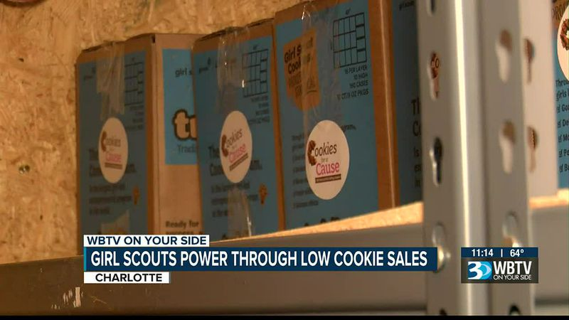 Girl Scouts power through low cookie sales