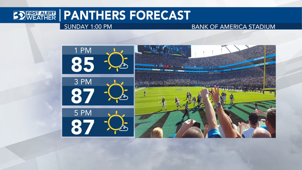 Panthers forecast