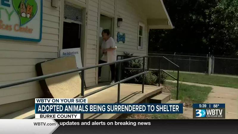 Adopted animals being surrendered to shelter