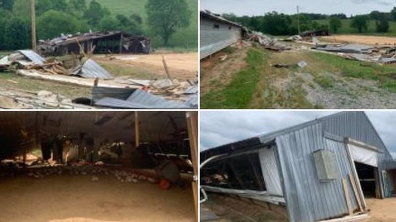 S.C. turkey farm destroyed