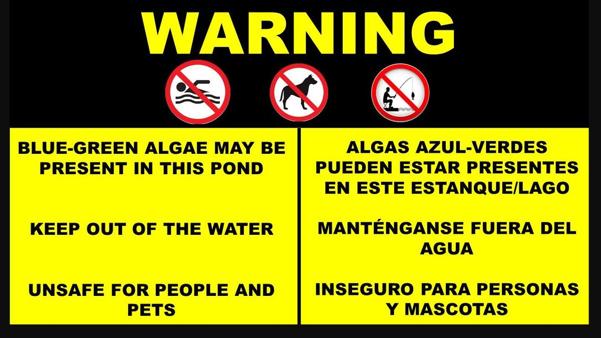 Park-goers in Davidson are being warned after a toxic algae was found in the pond at Roosevelt...