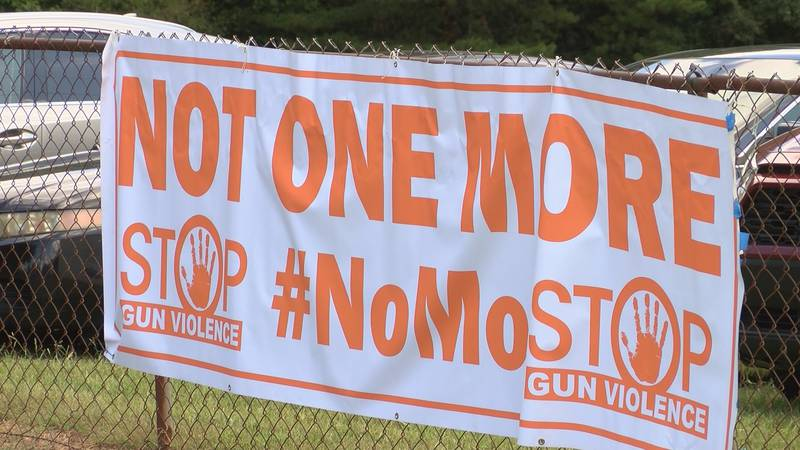 Members of the organization Not One More Anti Violence Task Force held an anti-gun violence...