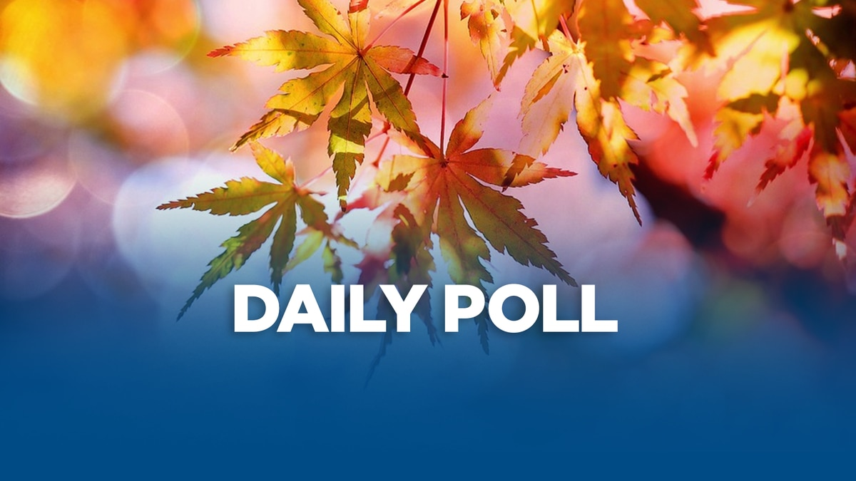 Poll about the fall season