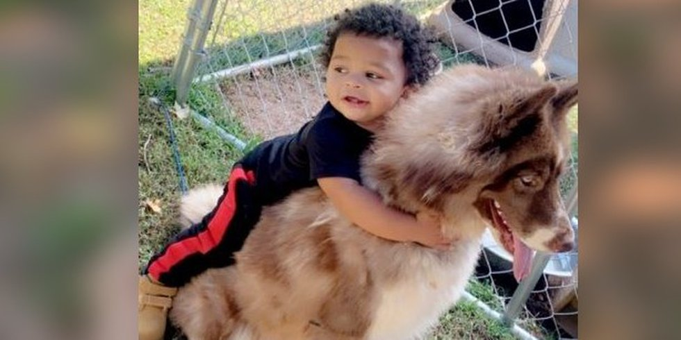 'I just want him back to normal': 2-year-old Cleveland Co. boy stable day after shooting